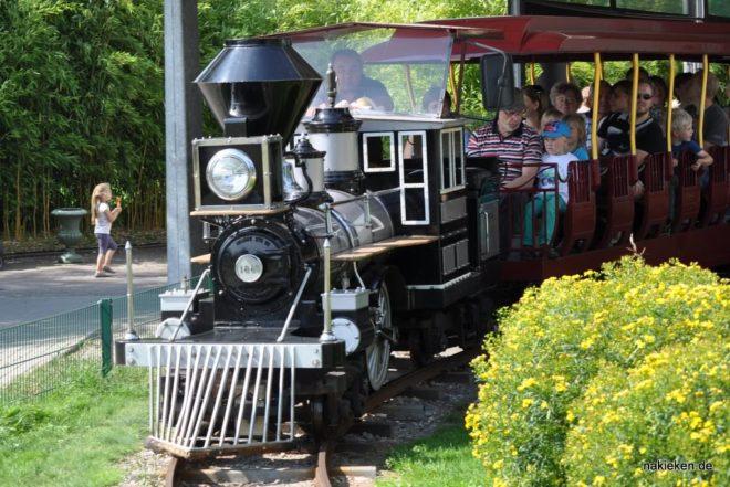 Eisenbahn im Zoo