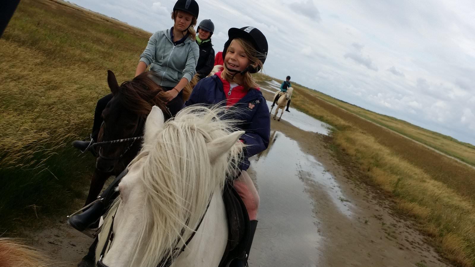 Pferde und Reiter
