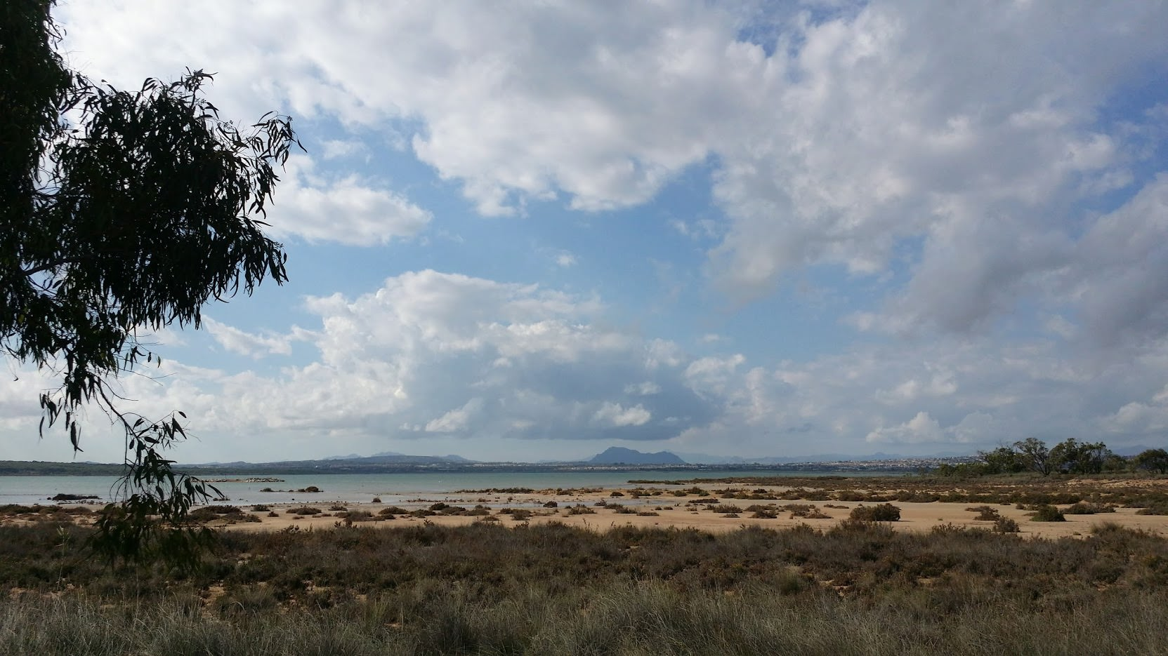 An der grünen Lagune