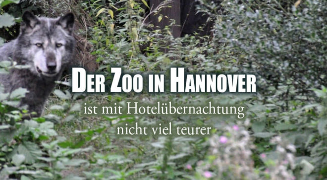 Zoo in Hannover
