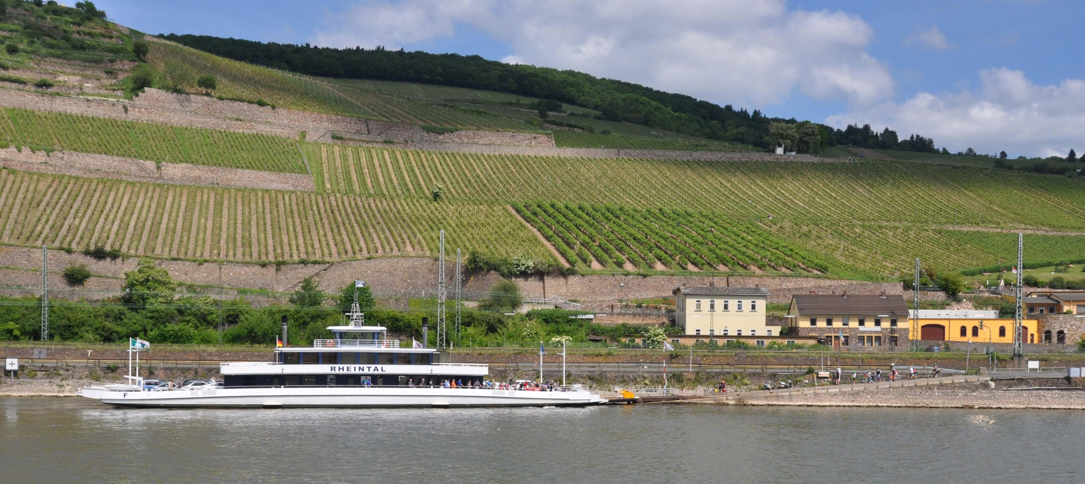 Rheintalfähre nach Bingen
