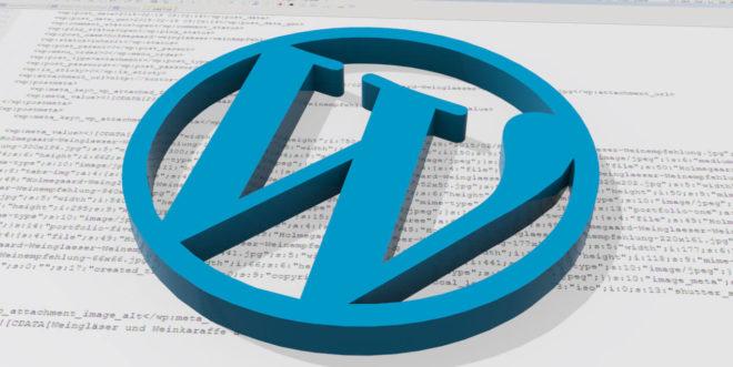 Wordpress Daten