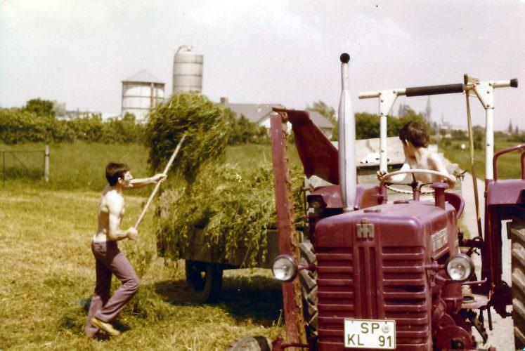 Wir machen Heu im Juni 1978