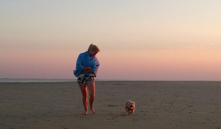 Strandspaziergang mit Hund