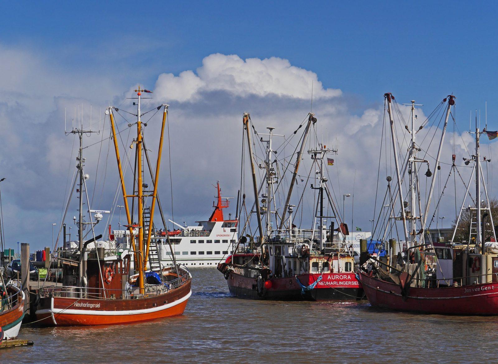 Fähre und Fischerboote